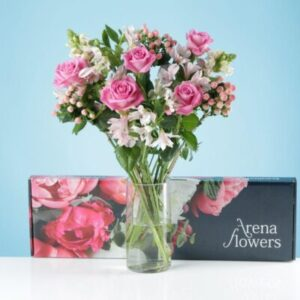 Letterbox Soft Blush